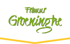 Frituur Groeninghe - Kortrijk
